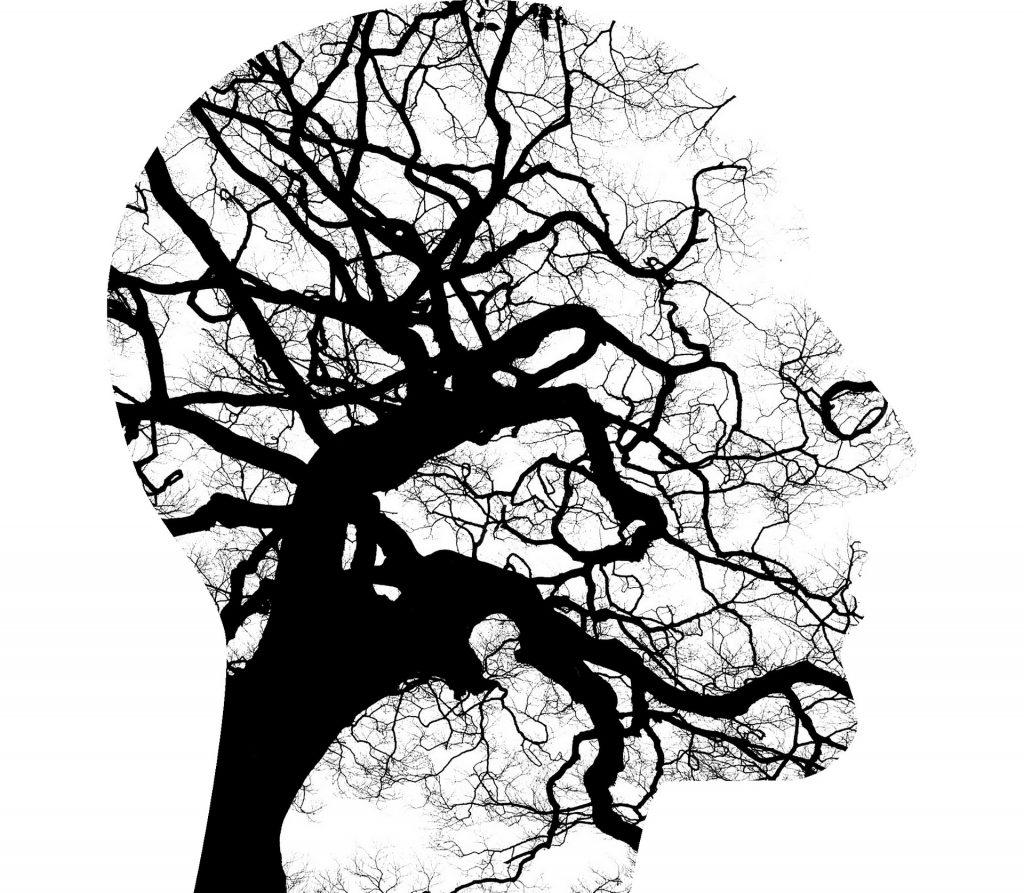 Mindfulness, inteligencia emocional, relajación...